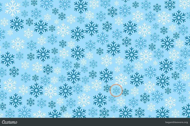 Snowflake-puzzle