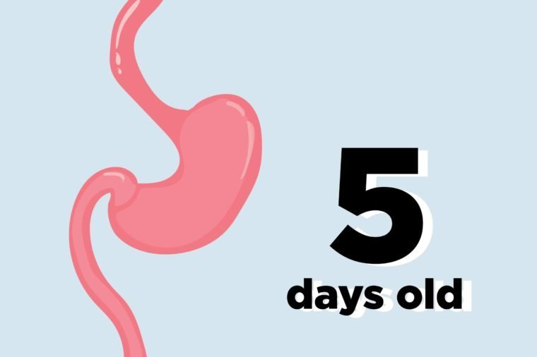 9 Body Parts That Are Younger Than You Think | Reader\'s Digest