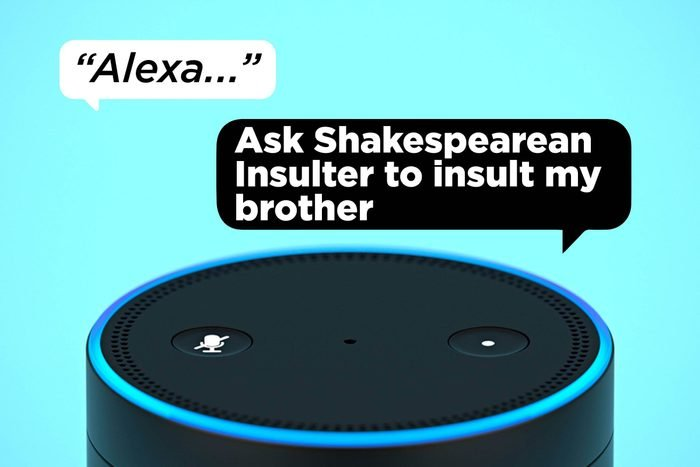 Alexa, ask Shakespearean Insulter to insult my brother