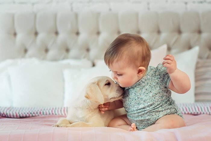 adorable baby kisses puppy's head