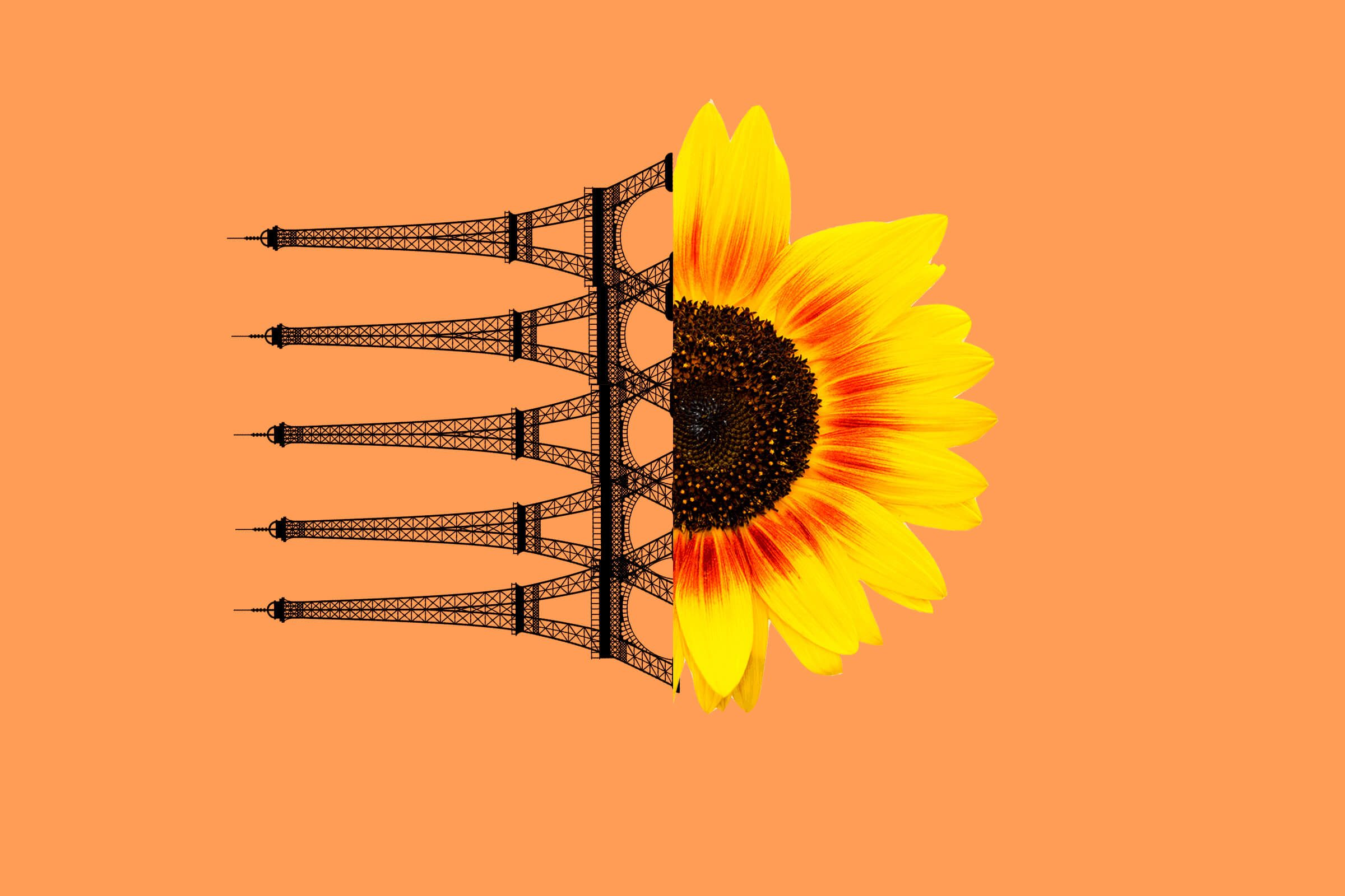 Eiffel-tower-sunflower