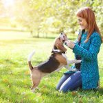 8 Signs Your Dog Really Does Trust You