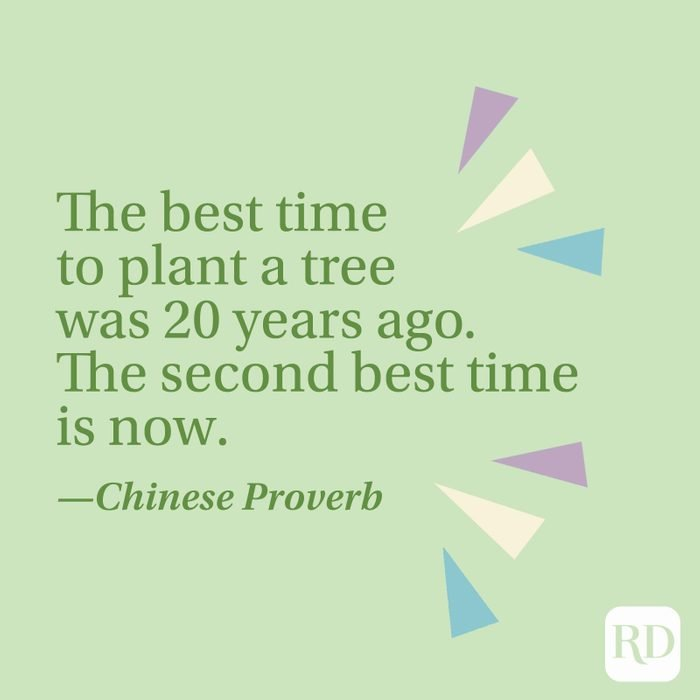 """""""The best time to plant a tree was 20 years ago. The second best time is now."""" —Chinese proverb"""