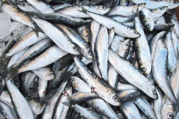 Sardines on a market stall