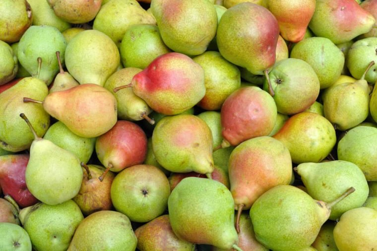 close-up of ripe organic pears after harvesting
