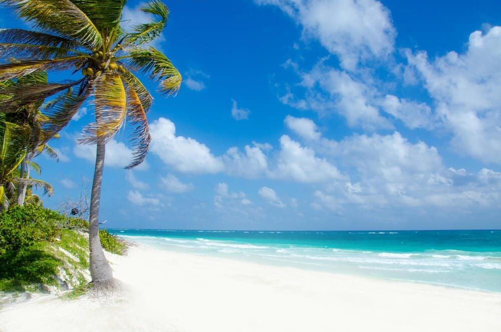 Wild Beach at Tulum  -  Yucatan Mexico