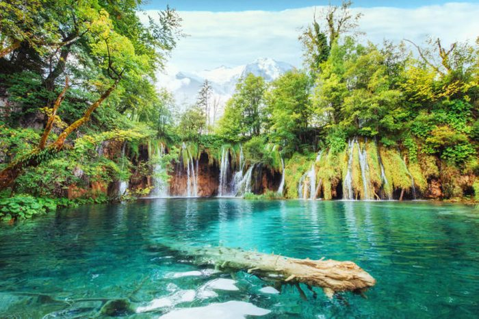 A photo of fishes swimming in a lake, taken in the national park Plitvice Croatia.