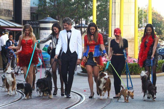 'The Bachelor' on set filming, Los Angeles, USA - 28 Sep 2017