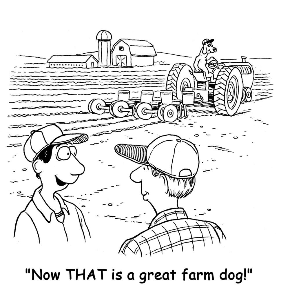 "The farm dog is helping the farmer by driving the tractor and the farmer says to his friend, ""Now THAT is a great farm dog!""."
