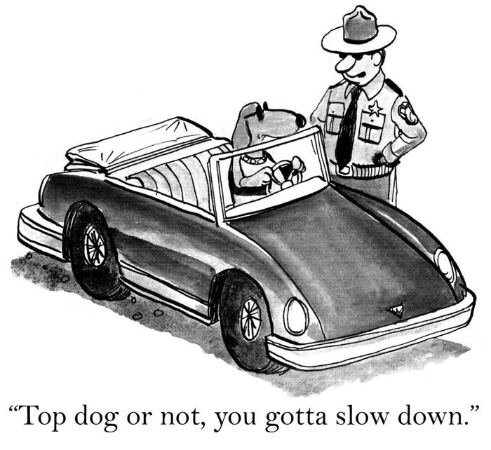 """""""Top dog or not, you gotta slow down."""""""