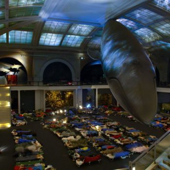 13 Museums Where You Didn't Know You Could Spend the Night