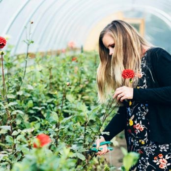 You'll Want to Start Your Own Flower Farm After Seeing These Gorgeous Photos