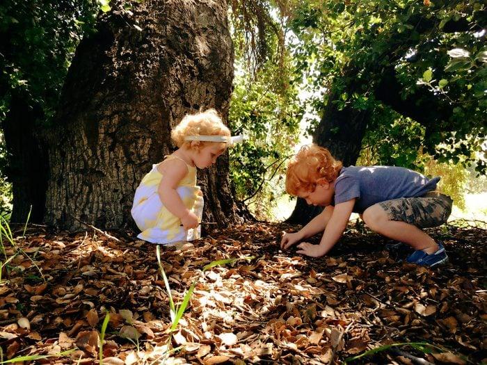 kids playing leaves