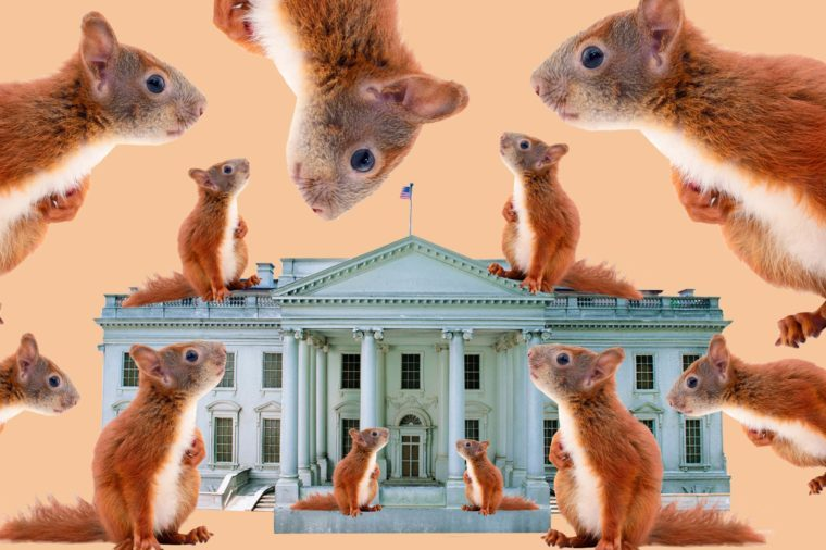 Strange-Things-Presidents-Banned-From-the-White-House