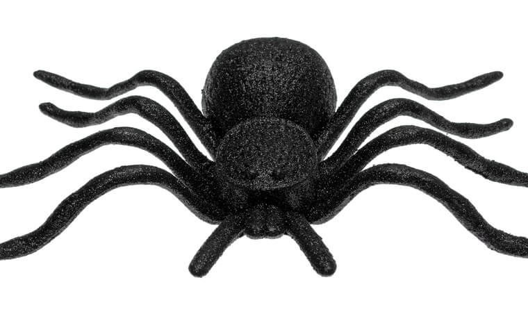 Front view of a plastic toy spider isolated on a white background.