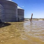 This Entire Town Helped Save a Farm from a Historic Flood