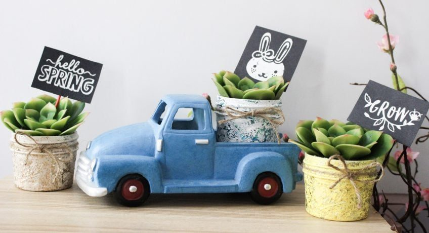 succulent planter craft idea