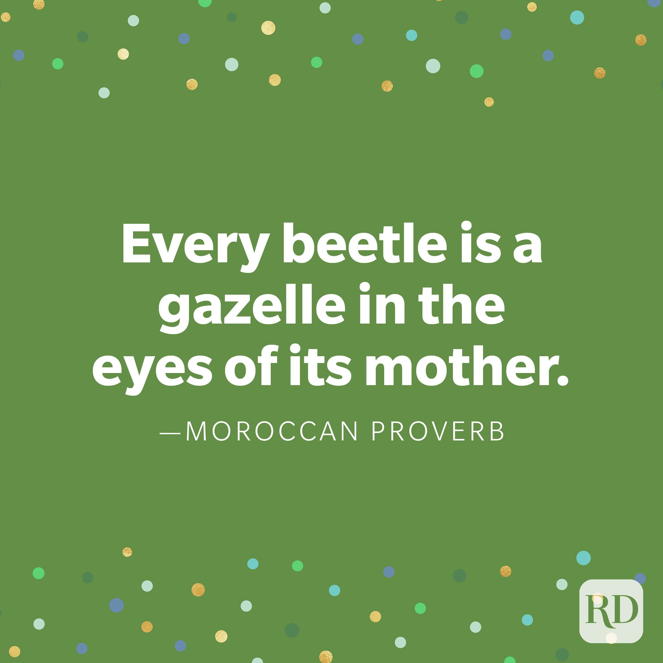 """Every beetle is a gazelle in the eyes of its mother."" —Moroccan proverb"