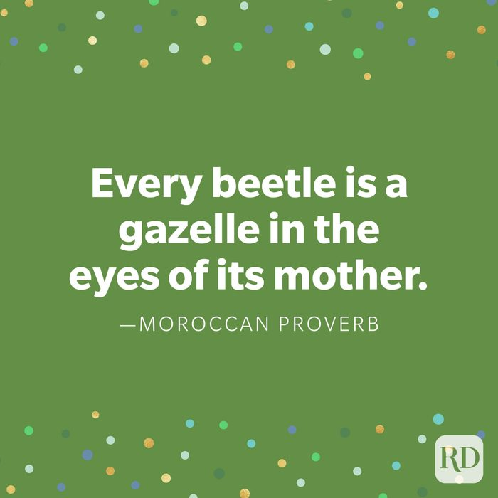 """""""Every beetle is a gazelle in the eyes of its mother."""" —Moroccan proverb"""