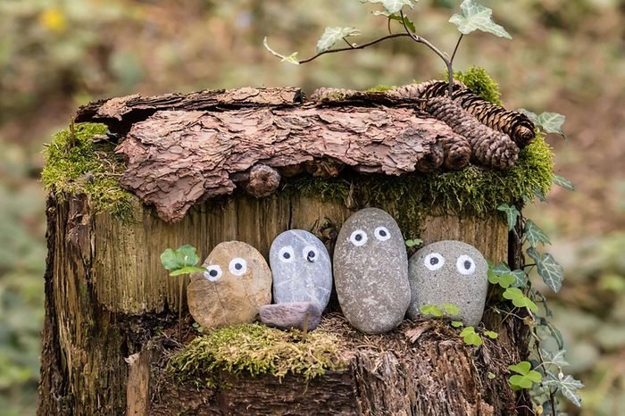 Four painted pebbles with eyes placed on a stump.