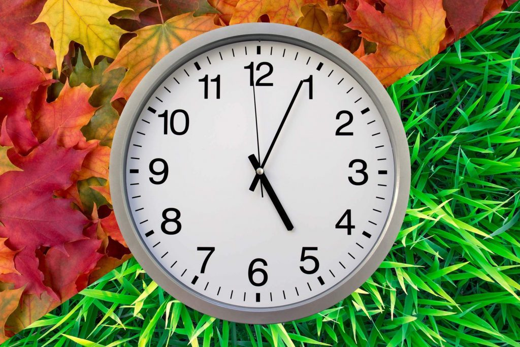 clock with fall leaves and spring grass around it