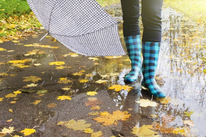 Rubber boots with umbrella in the background of the puddles and yellow leaves