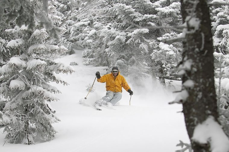 Expert skier skiing in deep powder snow in the trees, Mt. Mansfield, Stowe, Vermont, USA