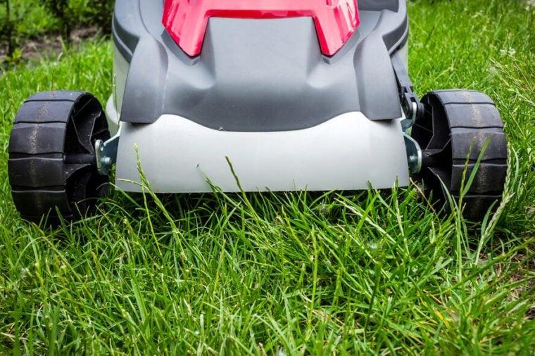 Lawnmower cutting grass in the garden