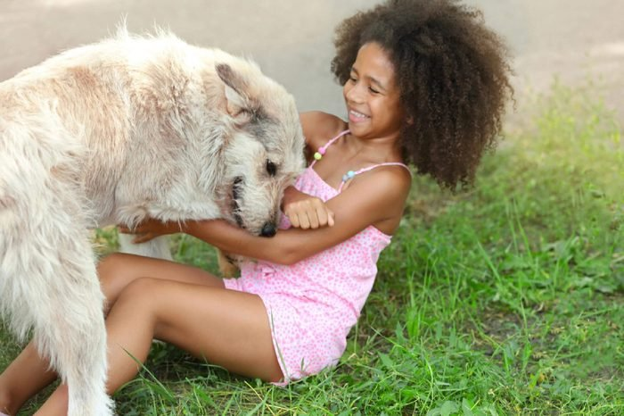 Cute African American girl playing with dog in park