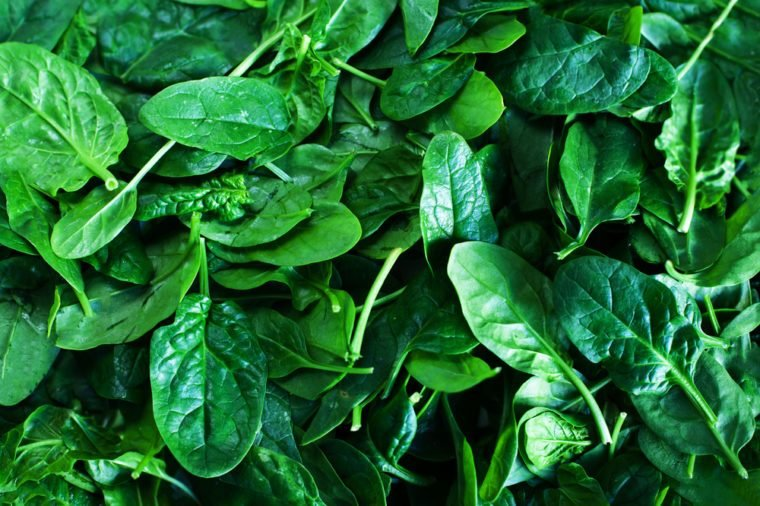 Fresh green baby spinach leaves background close up