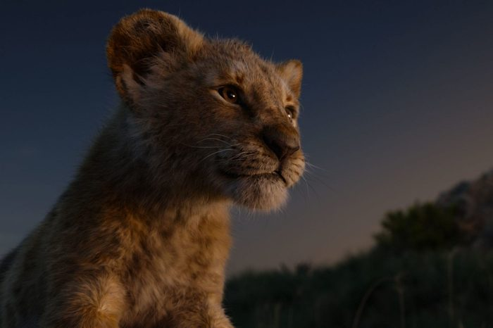 'The Lion King' Film - 2019