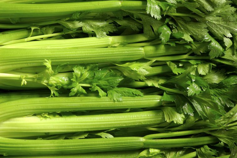 Fresh group of Celery