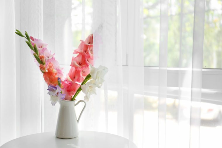 Fresh gladiolus flowers in a vase on table