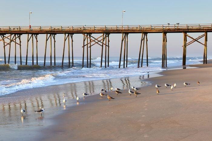 Sea gulls and fishing pier at Kure Beach, North Carolina