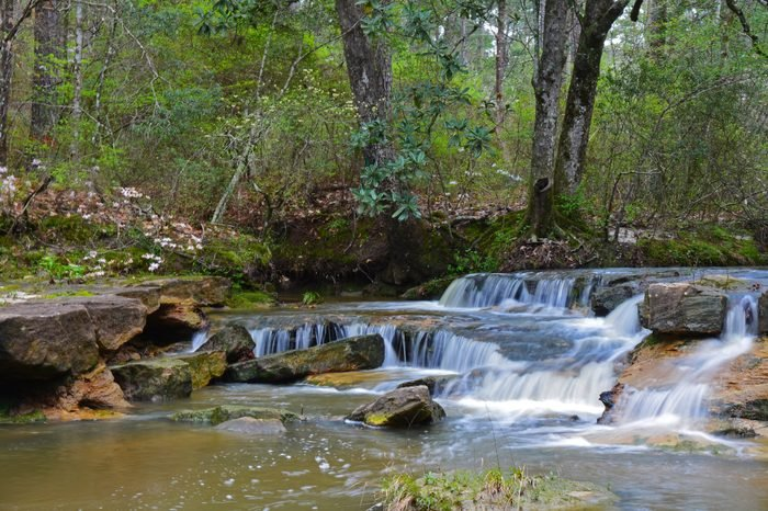 Kisatchie-Falls_Courtesy-Erich-Vallery,-United-States-Forest-Service