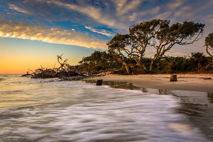 Morning light and waves at Driftwood Beach, on the Atlantic Ocean at Jekyll Island, Georgia.