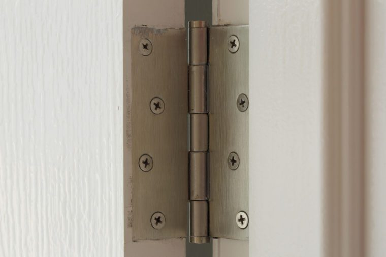 stainless hinges on a white door