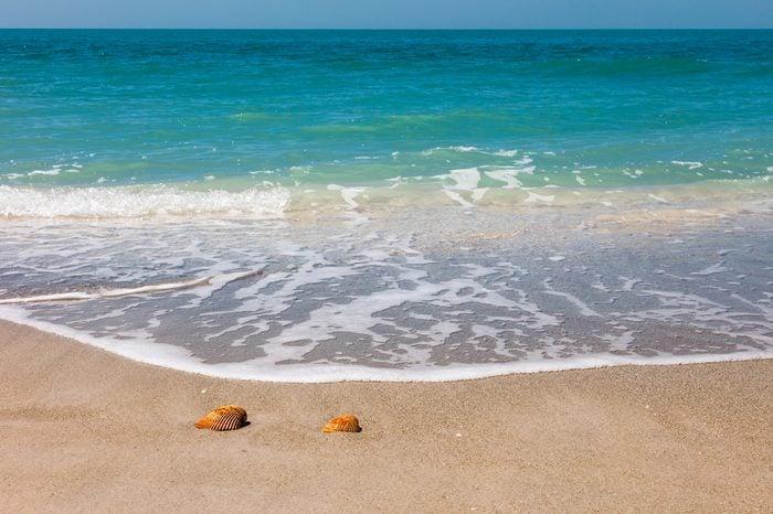 Beach, sand, shells, soft waves, horizon, blue sky, Sanibel Island, Florida, USA