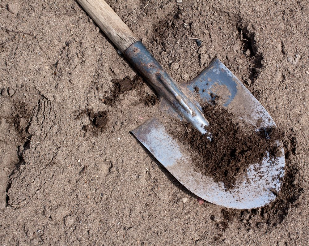 Old dirty shovel on the dry ground