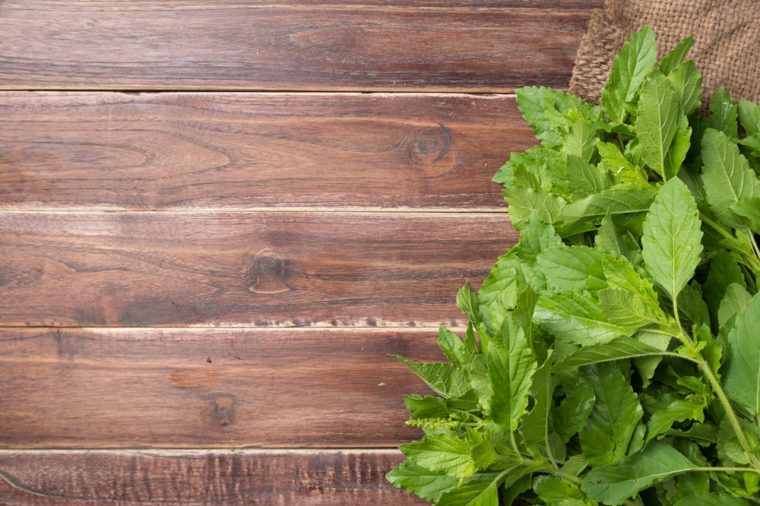 Holy basil leaves on wooden background, Copy space