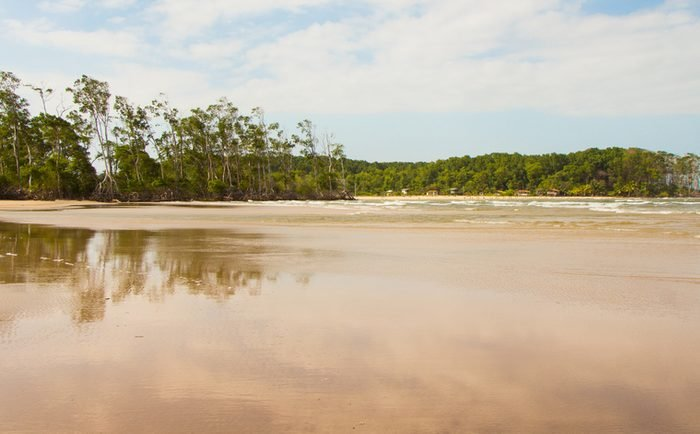 Reflection of mangrove trees in Barra Velha beach, by the Amazon river mouth, in Soure, Marajo island, Brazil.