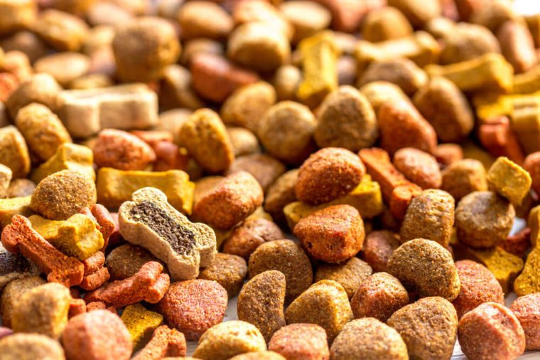 dry dog food in bulk close up