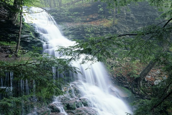 Rickett's Glen State Park Ganoga Waterfall