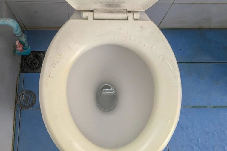 Fungus and bacteria in the bathroom, The Toilet bowl is very dirty, it needs to be cleaned.