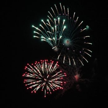 Can You Guess What This Fireworks Display Is Called?