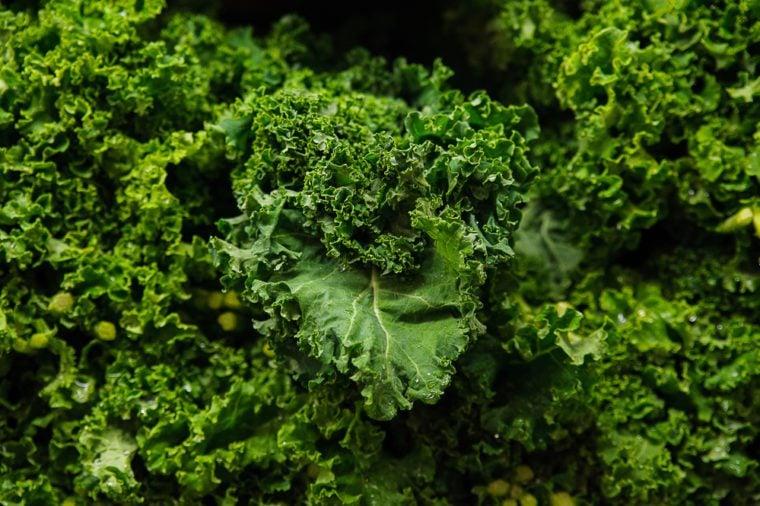 Food background - Brassica oleracea or kale juicy leaves
