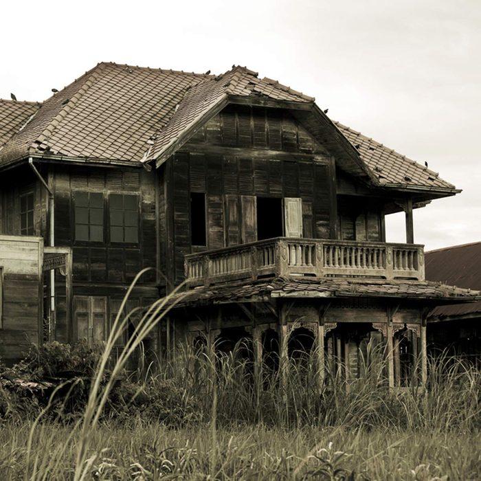 Treehouse Resort
