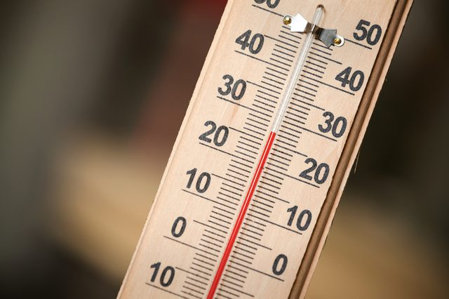 Closeup photo of household alcohol thermometer showing temperature in degrees Celsius