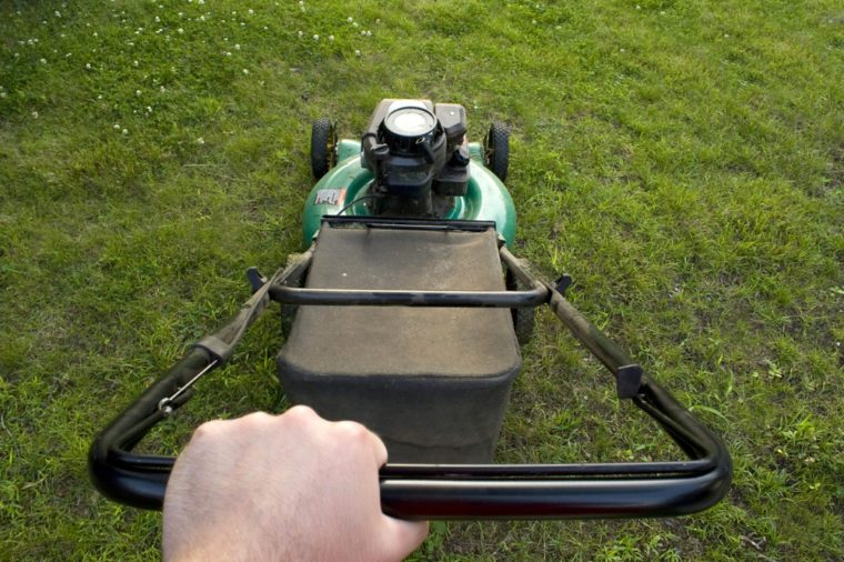 The interesting point of view from a man pushing a lawn mower.