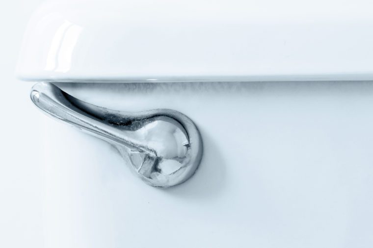Closeup of a toilet flush lever.